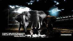 Believe, Elephant, Inspirational Quotes, Animals, Life Coach Quotes, Animales, Animaux, Inspring Quotes, Elephants