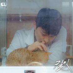 [Photos] New Jang Ki-yong Stills Added for the Upcoming Korean Drama 'Kill It' Drama Film, Drama Movies, Drama Korea, Korean Drama, In The Air Tonight, Hidden Movie, Movie Of The Week, Park Bo Young, Cute Girl Poses