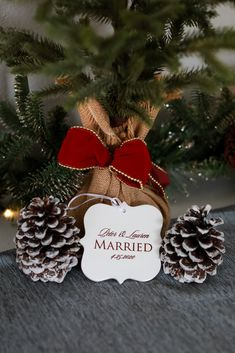 Christmas Wedding Centerpieces, Christmas Wedding Themes, Wedding Christmas Ornaments, Christmas Engagement, Wedding Ornament, Diy Centerpieces, Winter Bridal Showers, Winter Wonderland Wedding, Winter Wedding Inspiration