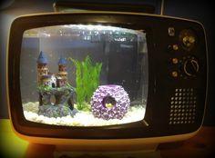Télé aquarium Aquarium Fish Tank, Fish Tanks, Aquarium Ideas, Vintage Tv, Vintage Ideas, Upcycled Vintage, Vintage Fishing, Repurposed Furniture, Old Furniture