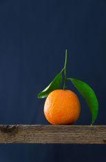 Single ripe tangerine stock photo