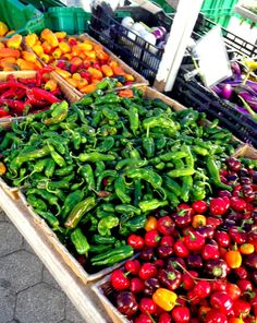 Union Square Farmer's Market, one of my favorite weekly things in New York City <3 Check out my blog post for all of the details! handbagsandheartbeats.blogspot.com #blog #blogger #nyc #newyorkcity #farmersmarket #organic #fall #fresh