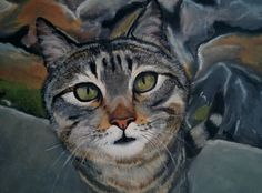 Are you looking at me 1 by ArtRatInTheCrack on Etsy