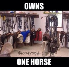 So me I only own one horse and I have a show saddle a hunter saddle lesson saddle an a trail ride saddle and so on