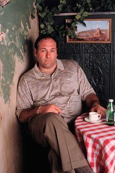 James Gandolfini as Tony Soprano.  Yup.  I always thought he was HOT.  R.I.P. James :(