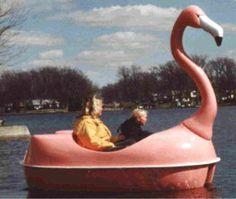 flamingo boat-Look Mom!!! LOL
