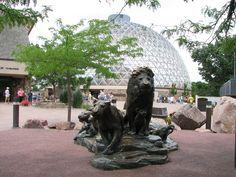 Omaha- Henry Doorly Zoo