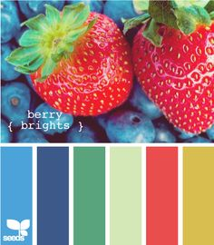 berry brights fantastic source of colour inspiration from design Seeds brilliant site! Exterior Color Schemes, Colour Schemes, Color Combos, Color Patterns, Exterior Design, Colour Pallette, Color Palate, Design Seeds, Green Design