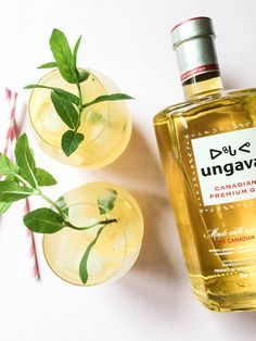 Mango Gin Tonic with Ungava | Gin tonique à la mangue avec Ungava -  PROJET PASTEL