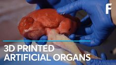 Scientists Can Now 3D Print Functional Organs