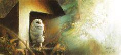 """Paul Christiaan Bos """"Owlery: Observatie 8 Sterre bij Morgenlicht""""  aquarel"""