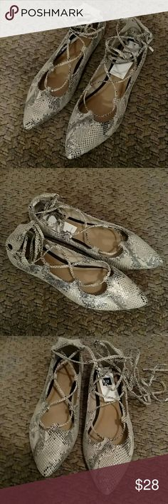 Gap Snake print pointy ballet flats lace up BRAND NEW! Gaps latest pointy ballet flats  Womens Size 6 M  Beautiful snake print. In grayish beige untertones This look amazing with ankle jeans or dressed up Final sale check your size before ordering, a new item is only new to me when it hasn't been shipped around a lot GAP Shoes Flats & Loafers
