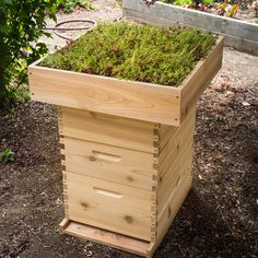 This amazing living roof will set your hive apart by adding a lush, striking look to your apiary or garden.