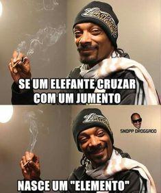 que viaje e essa vei Snoop Dogg, Memes Status, Thug Life, Best Memes, Funny Photos, I Laughed, Funny Jokes, Nostalgia, Kawaii