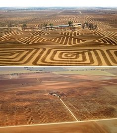A South Australian farmer has transformed his land into a gigantic geometric patchwork in a bid to fight soil erosion.