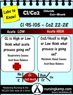 Bmp chem7 fishbone diagram explaining labs from the blood book chloride co2 ccuart Images