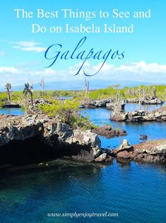 Are you planning to visit the Galapagos Islands in Ecuador? Make sure you visit Isabela Island! Here is a list of things to get inspired and start planning before your trip. tips list Darwin Tuneles Negra South America Travel, Travel Guides, Travel Tips, Travel Couple, Travel Around The World, Adventure Travel, Travel Inspiration, Simple, Galapagos Islands