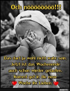Daily Health Tips: Search results for Wochenende Silly Jokes, Funny Jokes, Funny Images, Funny Pictures, Easter Quotes, Easter Sayings, Funny Picture Jokes, Office Humor, Christian Humor