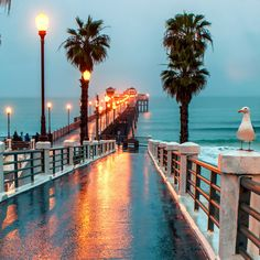 Oceanside Pier, San Diego County, California — by Blayden Thompson. Who says you can't enjoy a rainy day on the pier? So I'm heading to the pier this morning to take pictures in the rain? Oh The Places You'll Go, Places To Travel, Places To Visit, Pier Santa Monica, Home Beach, Oceanside Pier, Ocean Beach Pier, Beach Rain, Ocean Beach San Diego
