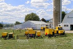 Amish Youth Paint Farm Buildings royalty-free stock photo
