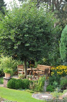 Сад Дирка Девриса в Бельгии | Ландшафтный дизайн садов и парков, Garten und bauen
