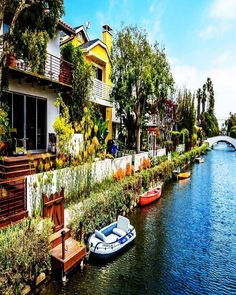 Developer Abbot Kinney loved Venice #Italy so much that he brought a taste of its famous canals to southern #California. Enjoy leisurely stroll through the residential neighborhoods or book a gondola tour of the #Venice Canals on TripAdvisor.