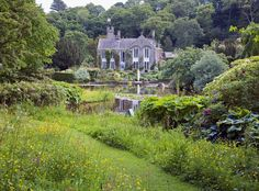 The return of the garden shrub - House & Garden - How To Spend It