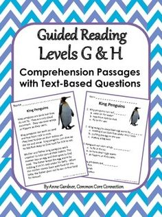 Reading Comprehension Passages with Text-Based Questions ~ Handy for group work, homework and fluency practice. Currently available for Guided Reading Levels C, D, E, F, G/H and I/J. ($)