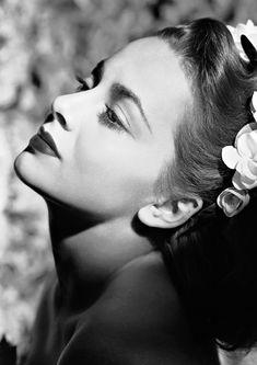 Available now at: www.etsy.com/shop/vintageimagerystore Hollywood Cinema, Hollywood Walk Of Fame, Golden Age Of Hollywood, Golden Globe Award, Golden Globes, National Board Of Review, Captain Blood, Olivia De Havilland, Adventure Film