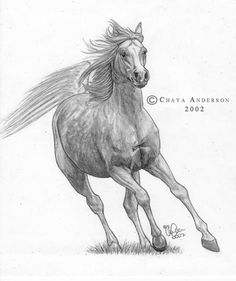 Pencil Drawings of Horses | More from deviantART           Julia, that,s pretty!