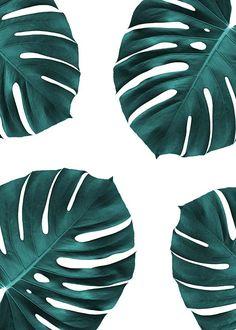 Monstera pattern Affiche dans le groupe Affiches / Botanique chez Desenio AB (2436)
