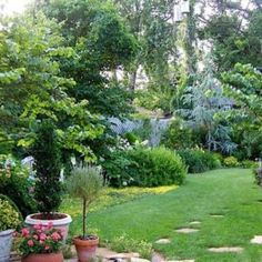 Beautiful Garden With Evergreen Shrubs And Potted Plants , Beautiful Garden With Evergreen Shrubs In Garden And Lawn Category