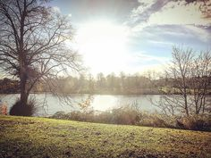 Trying to enjoy the last days of #sunshine before the #winter arrives  #birmingham