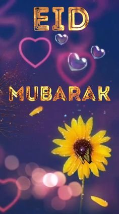 Happy Eid Mubarak Always stay happy Smile care Eatch Others thanks Eid Mubarak Card, Eid Mubarak Greetings, Happy Eid Mubarak, Eid Mubarak Song, Beautiful Flowers Wallpapers, Beautiful Gif, Stay Happy, Happy Smile, Merida