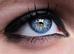 Heterochromia. Blue + tan.
