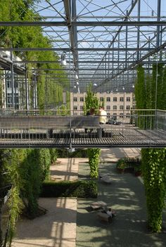 Vertical park with climbing plants on steel frame. MFO Park, Oerlikon, Zurich, Switzerland by Burckhardt + Partner and Raderschall Landschaftsarchitekten AG