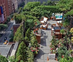 dachgarten design stadt pflanzen sichtschutz holz möbel