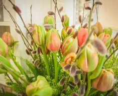 Spring, Plants, Plant, Planets