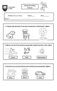 Ciencias prueba primer año Kindergarten, Spanish, Homeschool, Science, Math Equations, Education, Google, Victoria, Socialism