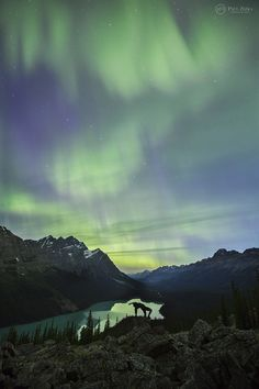 June 22nd 2015 aurora display in the Alberta Rockies. The show was never overly bright, but covered a large portion of the sky and occasionally extended far to the south. Great variety of colours as well. Another magical night under the lights in the heart of Banff National Park!