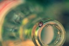 Own photography!