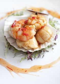 coquilles stock2