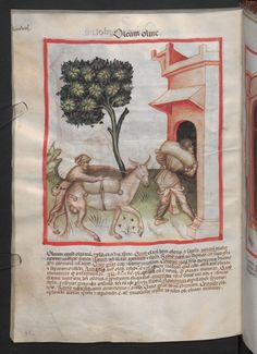 Folio 91v (page 186). Tacuinum sanitatis, Codex Vindobonensis, series nova 2644. Northern Italy, probably Verona, 1380-1399.