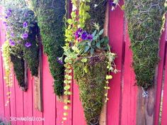 How to create your own hanging garden:  http://www.stowandtellu.com/vertical-chicken-wire-pallet-wood-hanging-planter/