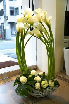Lily Flower Arrangements Wedding Center Pieces – It is no coincidence that calla lilies are such a popular choice for … Altar Flowers, Home Flowers, Church Flowers, Funeral Flowers, Contemporary Flower Arrangements, White Flower Arrangements, Flower Arrangement Designs, Calla Lily Centerpieces, Flower Landscape