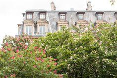 #paris #parisian #parisapartment #rebeccaplotnick #travelphotography #parisphotography #parisapartment Paris Photography, Signs of Spring in Paris, France, Parisian Apartment, Paris Architecture, french home decor, Parisian, Haussmann by rebeccaplotnick on Etsy
