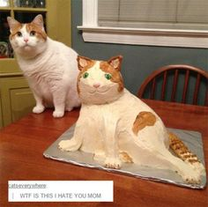 This mom and the cake she made to resemble her cat. | 18 Parents Who Are So Extra That It's Actually Endearing