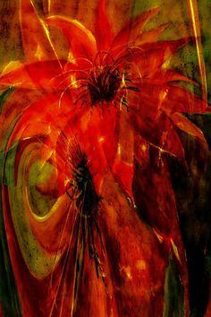 'Phönix - Kaktusblüte abstrakt' von Chris Berger bei artflakes.com als Poster oder Kunstdruck $27.73