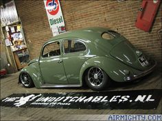 ragtop beetle - Google Search