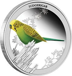 2013 AU birds of australia BUDGERIGAR Birds of Australia Silver Proof Coin 50c Australia 2013 Dollar Perfect Uncirculated -- Be sure to check out this awesome product.
